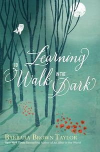 Learning to Walk in the Dark Book